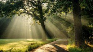3 paprasti pratimai patiriantiems stresą